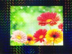 画像2: ホログラムラミネートフィルム (K17) 760mm x 20m巻