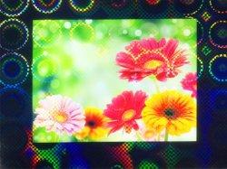 画像2: ホログラムラミネートフィルム (KP4) 760mm x 20m巻